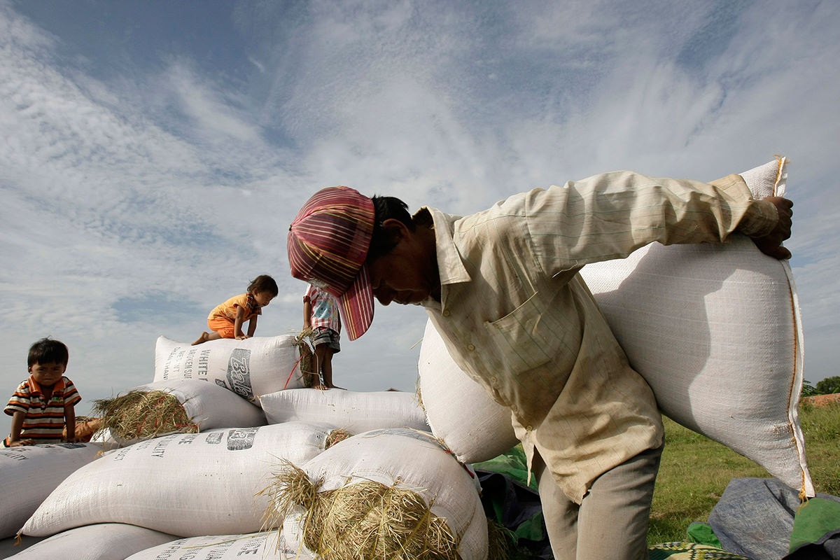 Cambodia produces 10 5 mln tons of paddy rice last year: PM